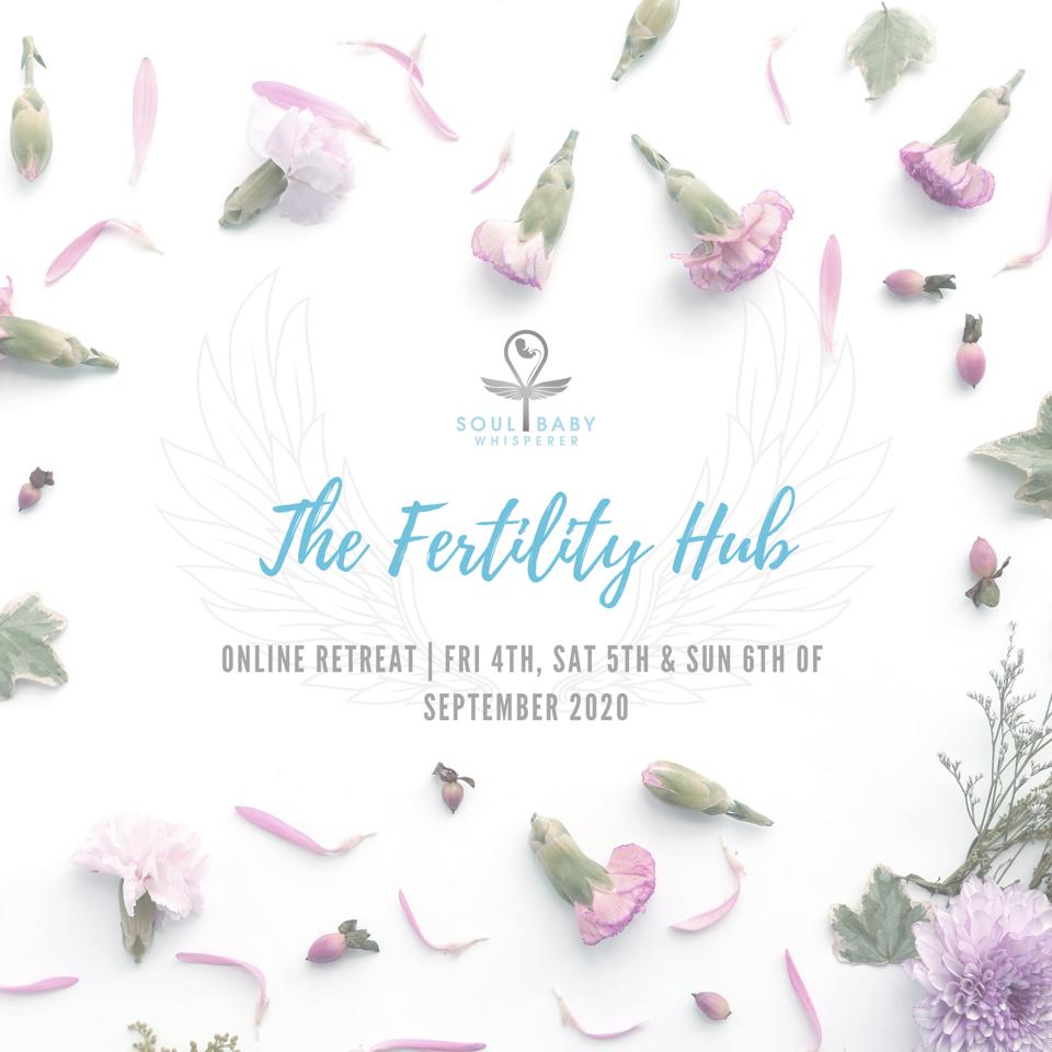 Cover Art - The Fertility Hub